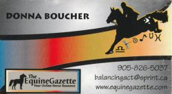 Equine Gazette